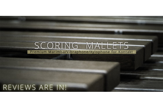 Recording Magazine just gave Scoring Mallets a thorough a...